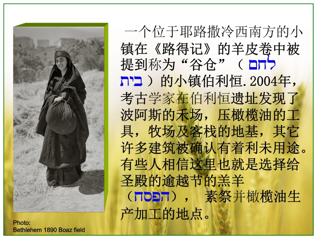 Chinese Language Bible Lesson First Fruits Ruth went to Baoz' barley fields