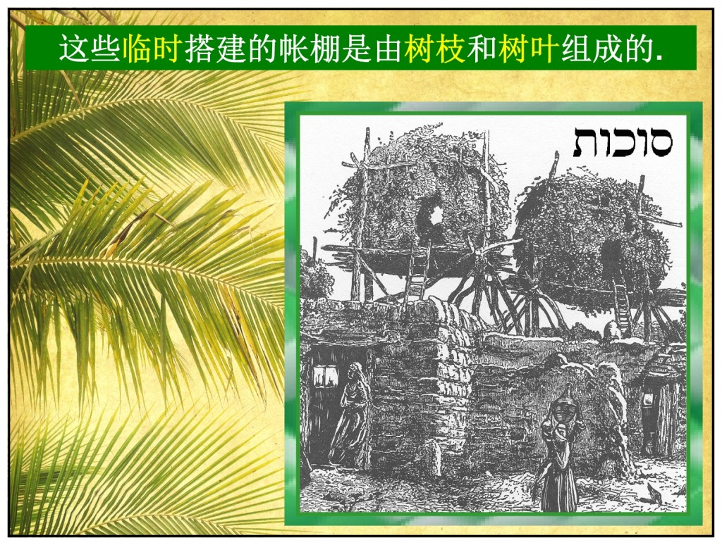 Small Sukkot, small booths to live in for this feast of Tabernacles Chinese language