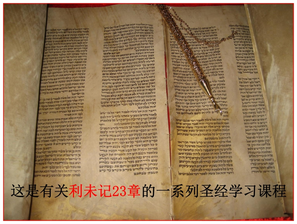 Chinese language Bible study Torah Scroll opened to Leviticus 23
