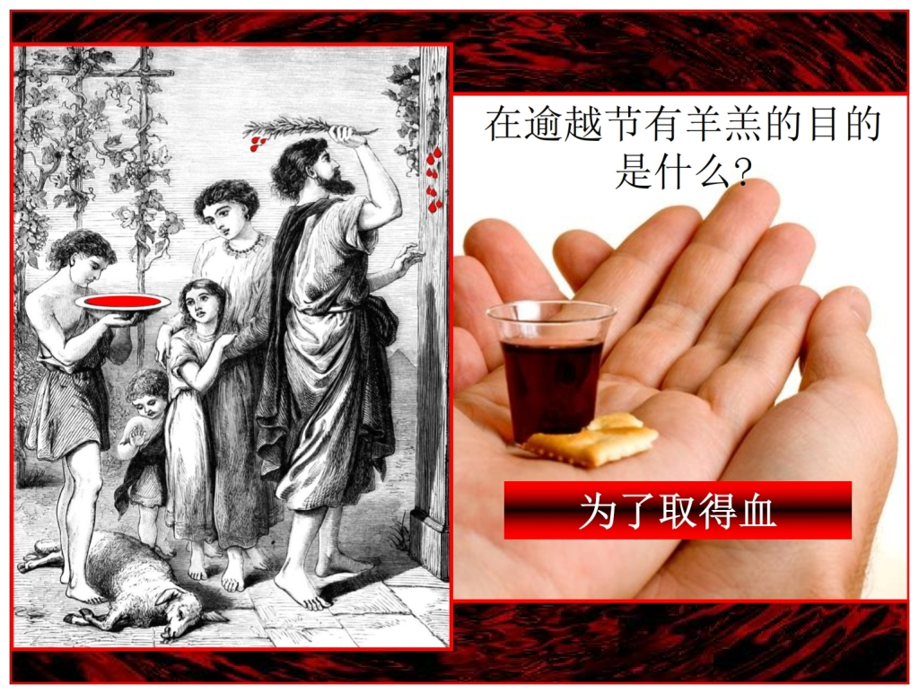 Chinese Language Bible The Passover Lamb was slain for the blood