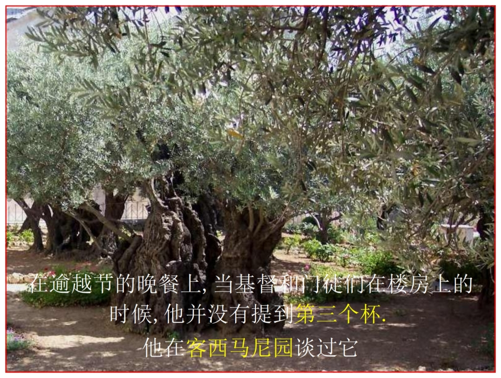 Chinese Language Bible Study four cups The Third spoke of  in Gethsemane Garden