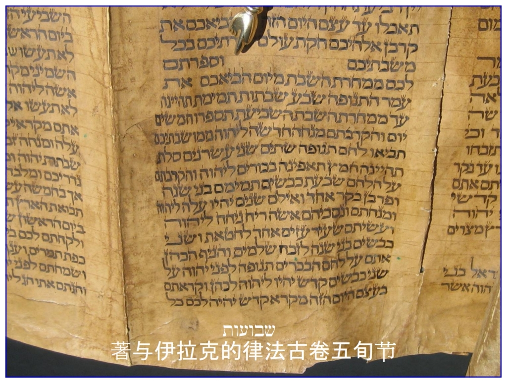 Chinese Language Bible Lesson Feast of Weeks Hebrew Torah Scroll Leviticus 23