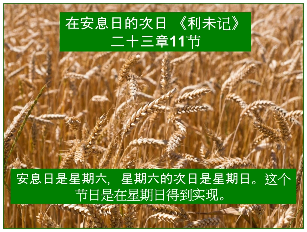 Chinese Language Bible Lesson First Fruits took place on Sunday Morning