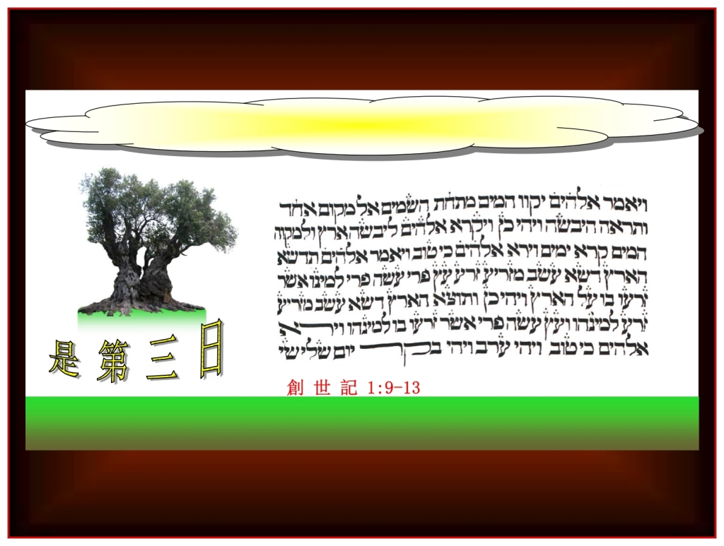Chinese Language Bible Lesson everything on the Third Day of Creation was Good