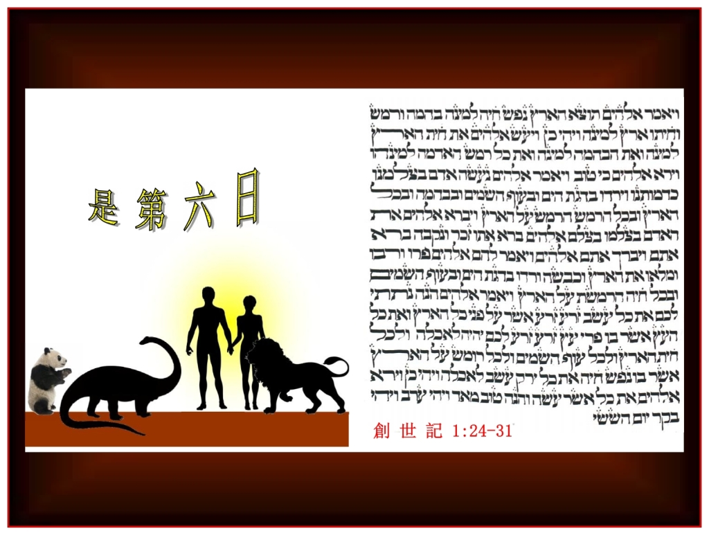 Chinese Language Bible Lesson everything on the Sixth Day of Creation was Good