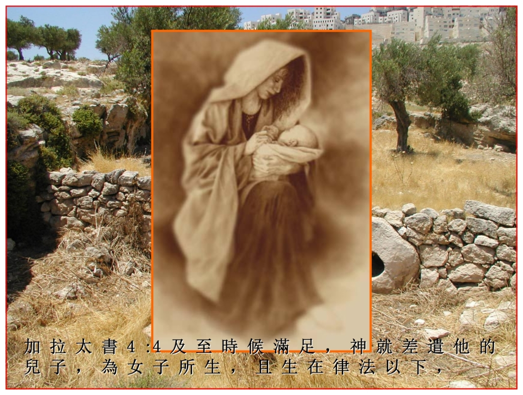 Chinese Language Bible Lesson The Woman's seed was The Messiah Jesus