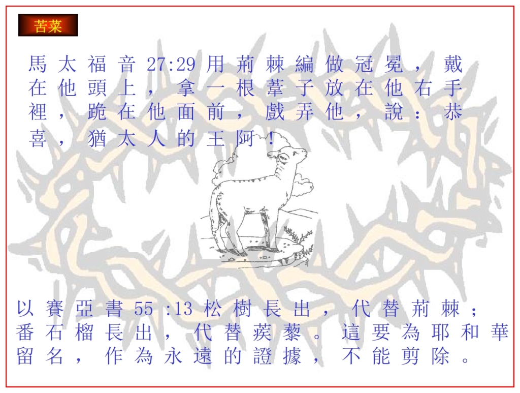 Chinese Language Bible Lesson The Passover Lamb removed the thorns