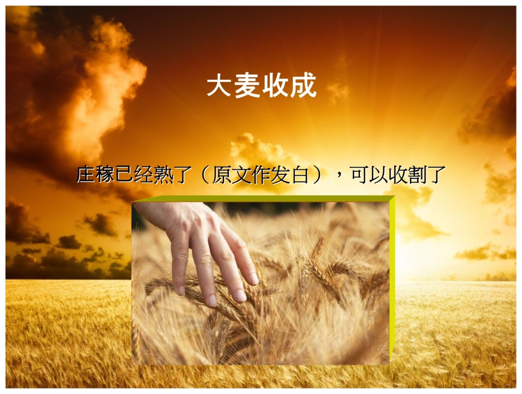 Chinese Language Bible Lesson First Fruits What is the Omer