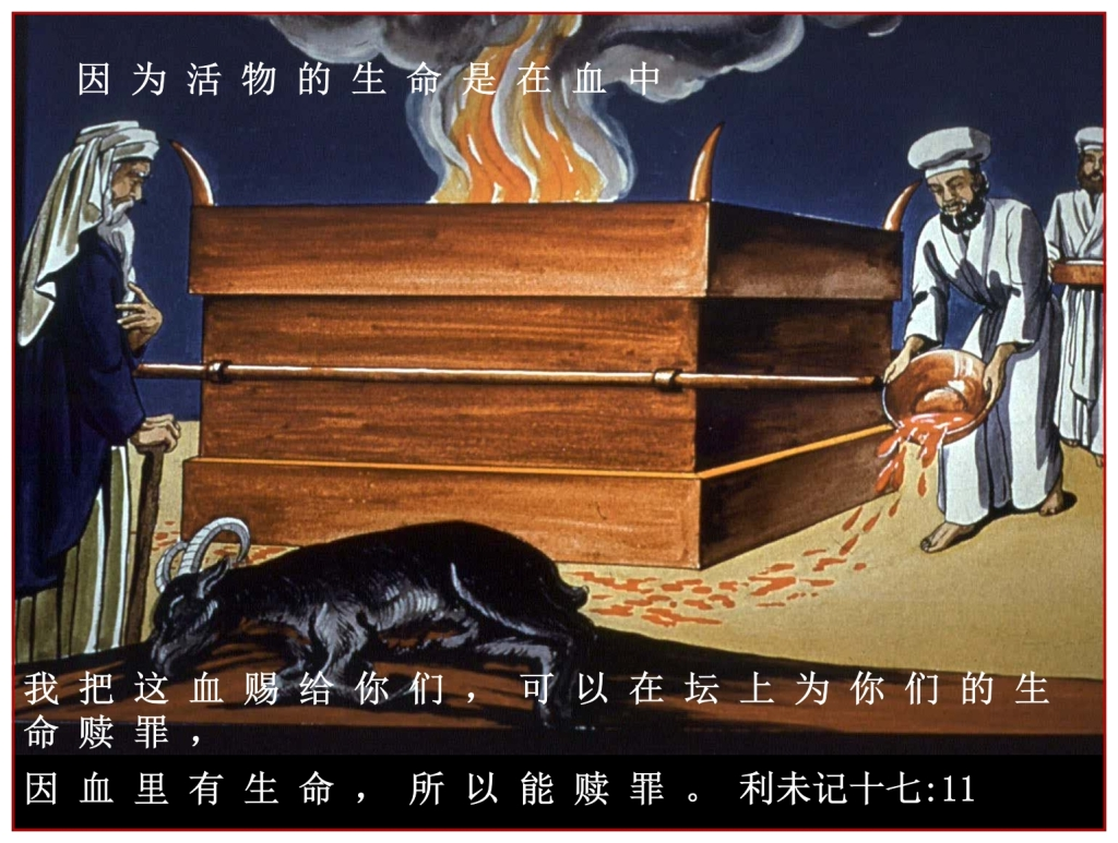 God requires a blood sacrifice Chinese Language Bible Lesson Day of Atonement