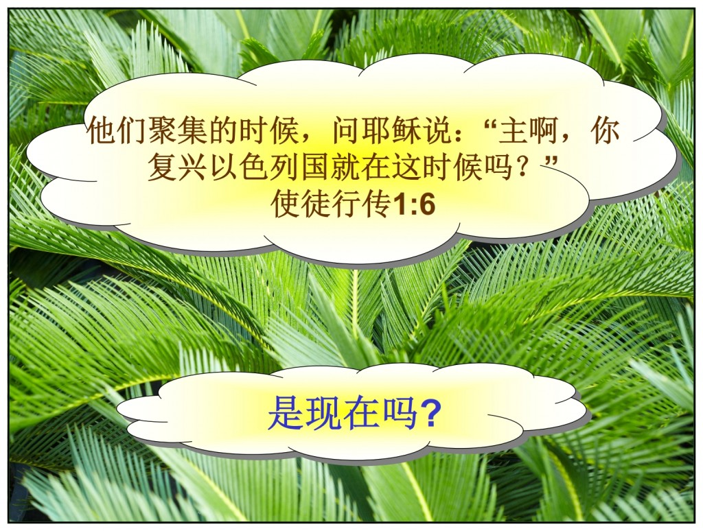 Many questions about the Kingdom of God Chinese language Bible study