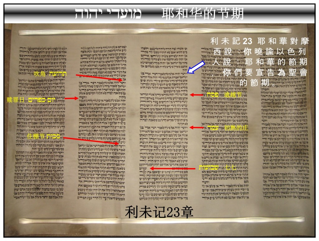 Torah Scroll showing the Feasts of the Lord Leviticus 23 Chinese Language Bible Study