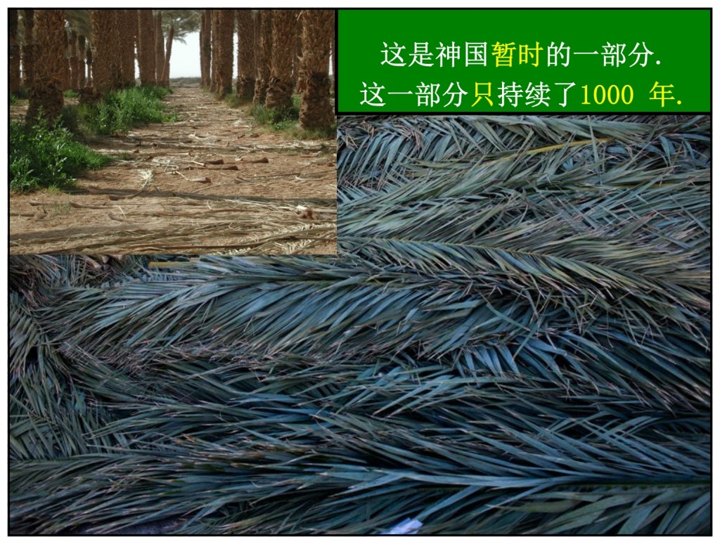 The palm branches were temporary, symbolizing the 1,000 year part of the eternal Kingdom. Chinese language