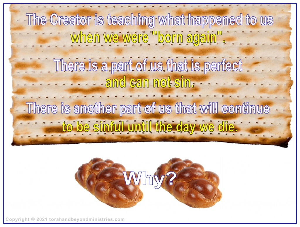 """During the Feast of Shavuot, God is teaching us what happened when we were """"Born Again""""."""