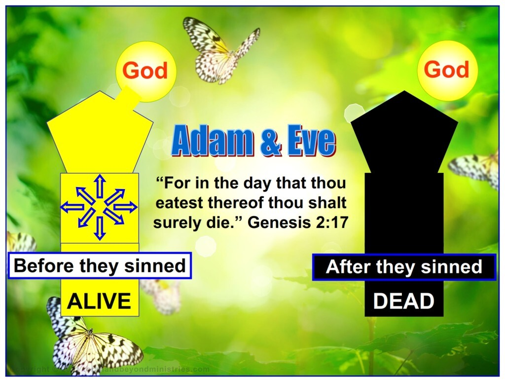 The true meaning of death is separation from God. The very moment Adam and Eve ate the forbidden fruit their spirit, their life, was seperated from God. It took another 900 years for their body to cease functioning.