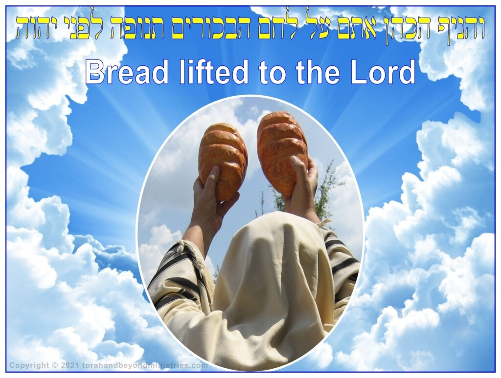 Hebrew Priest lifting bread to the Lord at Shavuot, Pentecost.