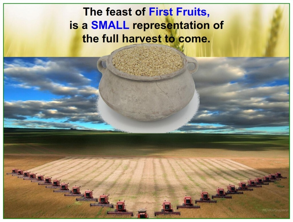Some day there will be a huge harvest Feast of Firstfruits