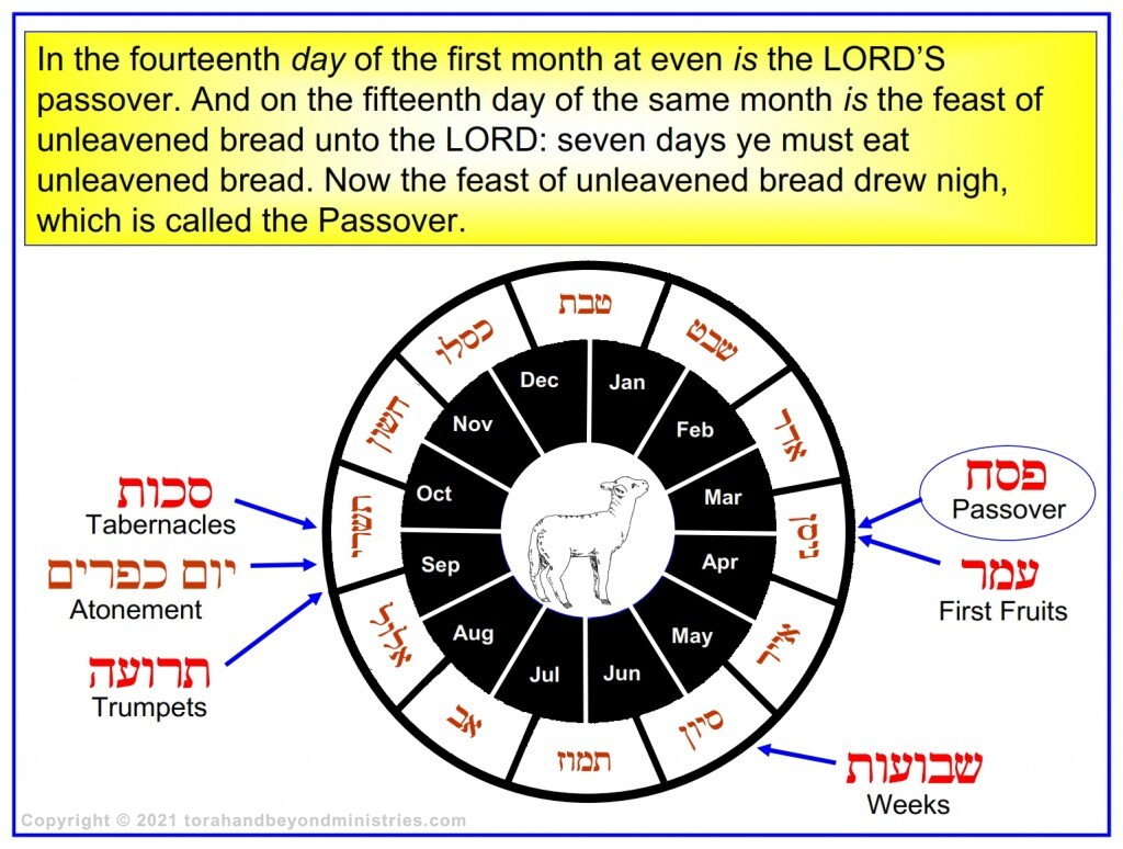 Chronological chart of the Hebrew calendar of the Leviticus 23 in Hebrew and English