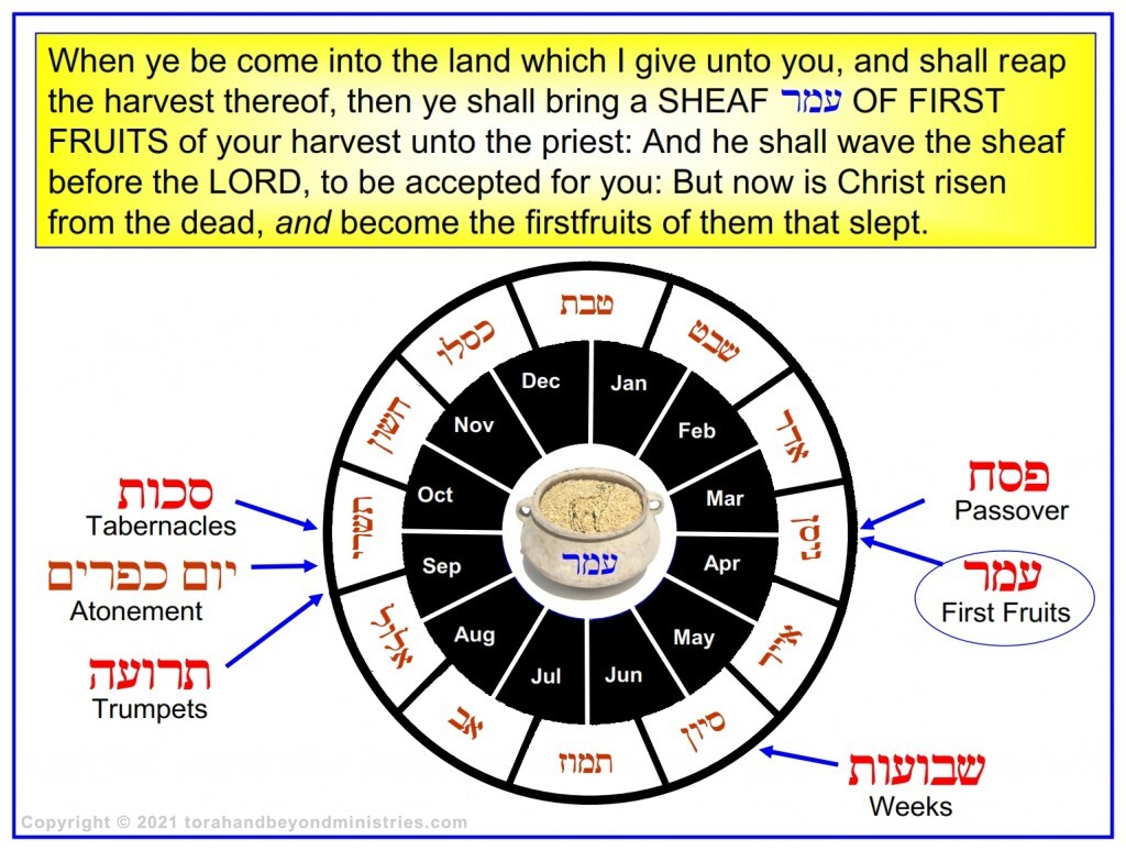This Hebrew calendar chart shows the order of the feasts of the Lord and amount of time between each feast.