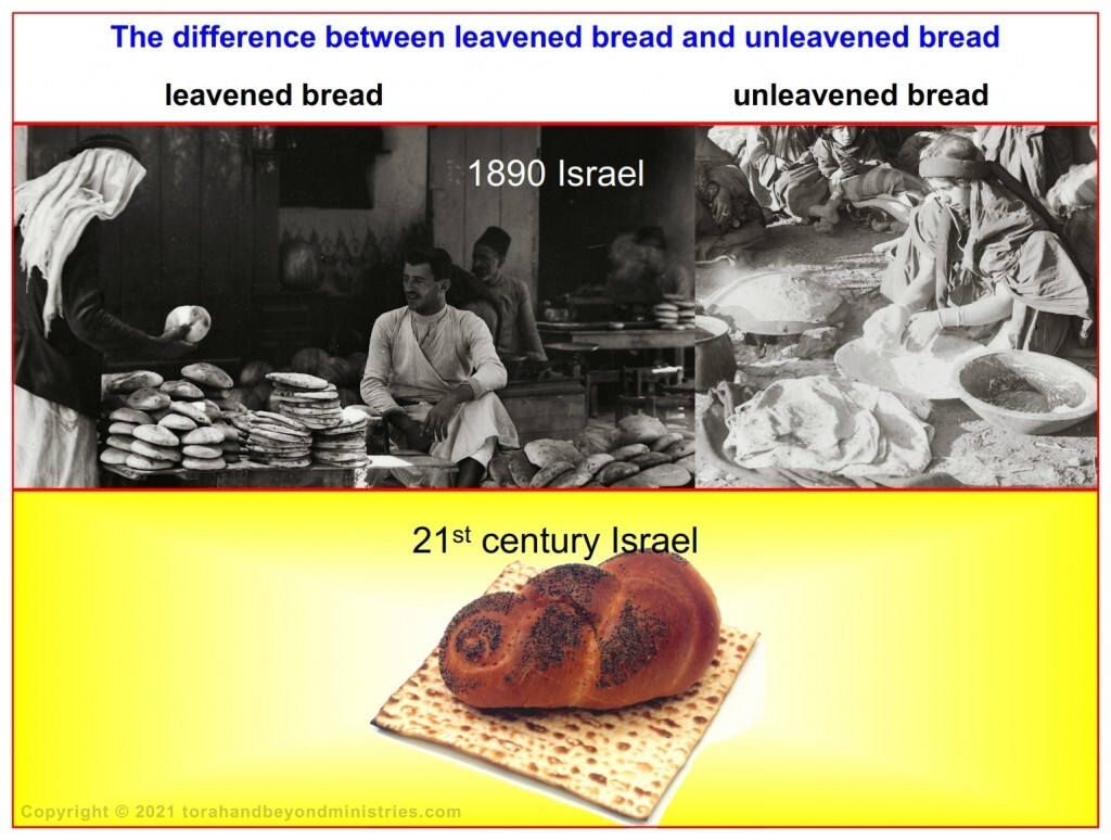 Comparing Matzo with bread that contains yeast