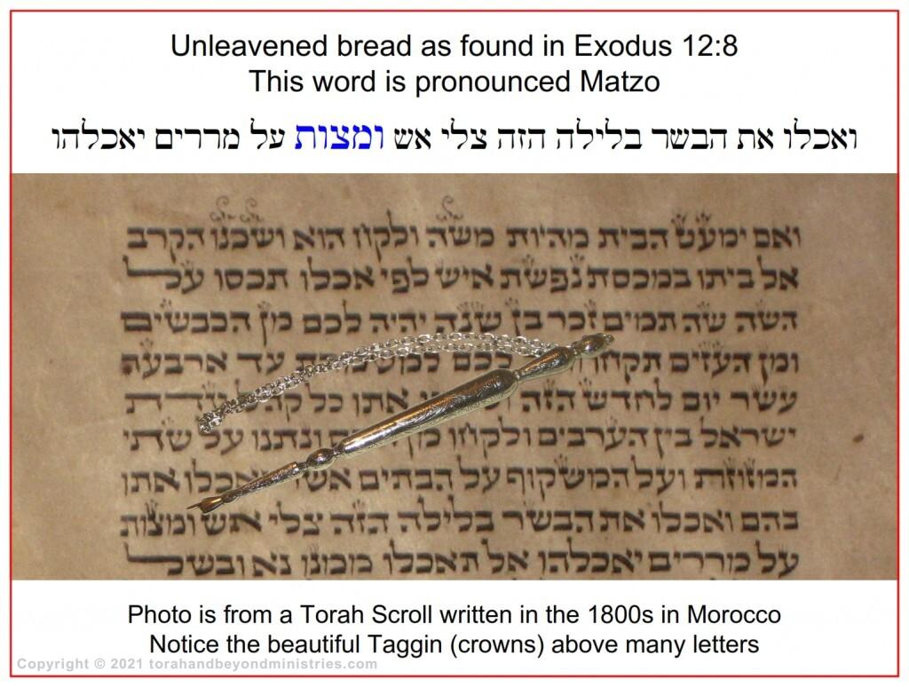 Torah Scroll written Morocco showing the word Matzo in Exodus 12