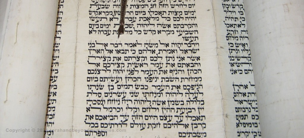 Torah Scroll written in Morocco on goat skin. The yad (pointer) is indicating the verse Leviticus 23:10