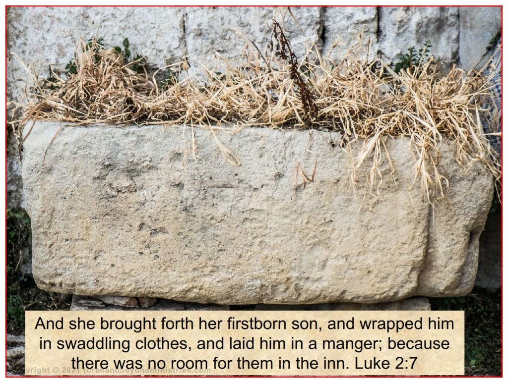 """Most Christians today have no idea what a """"manger"""" is. In Israel a manger is a hollow space cut out of a large rock. This area is filled with food usually for sheep and goats."""