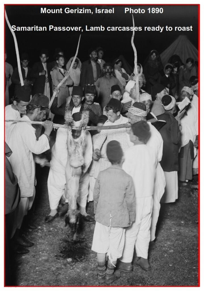 Samaritan Passover, killing and preparing the lamb carcass, Photo 1890