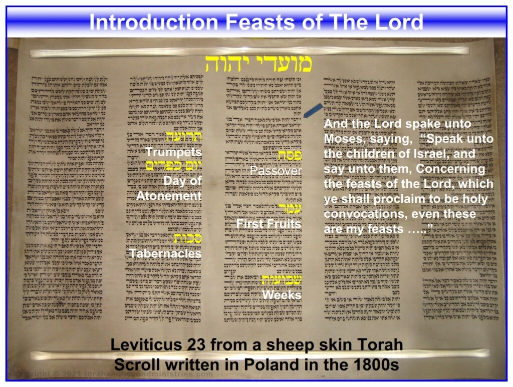 Open Torah Scroll showing Leviticus 23 - Feasts of the Lord Leviticus 23