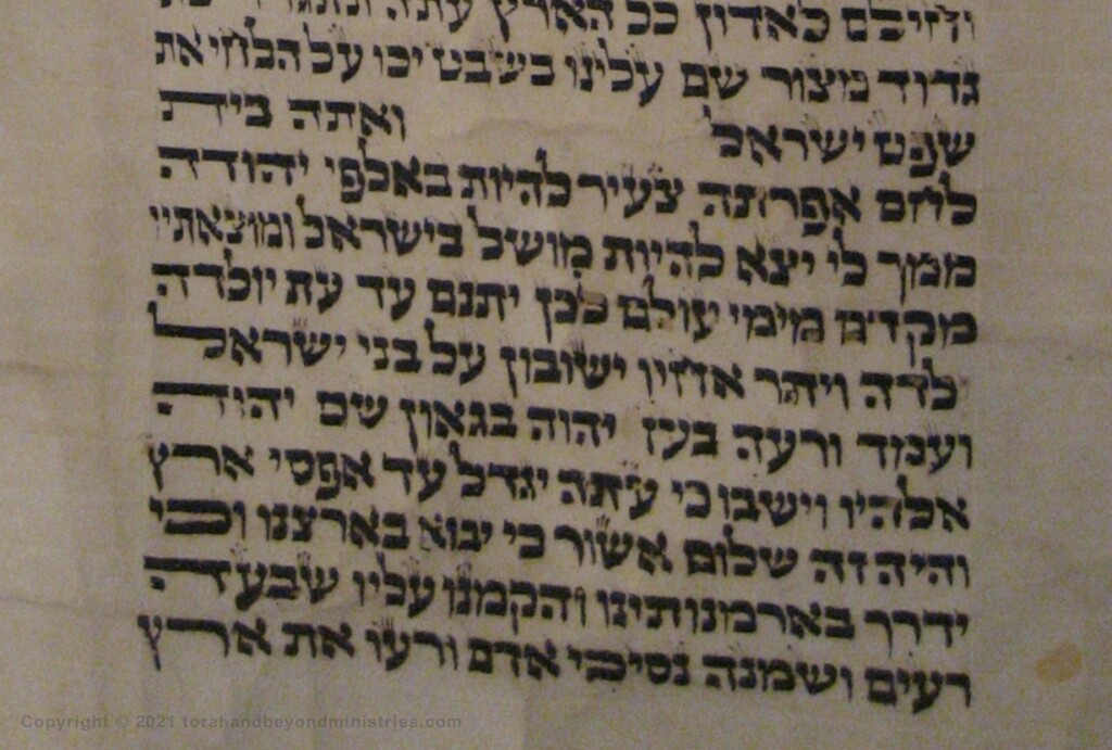 The book of Micah 5 as seen in the Hebrew Scroll of the 12 Prophets