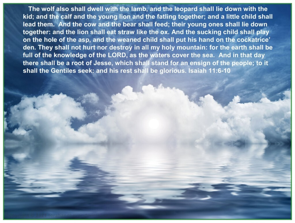 The wolf also shall dwell with the lamb, and the leopard shall lie down with the kid;