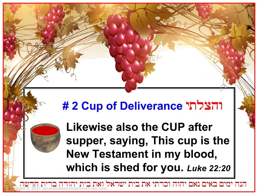 The cup of deliverance is the cup The Messiah Jesus said was the New Covenant
