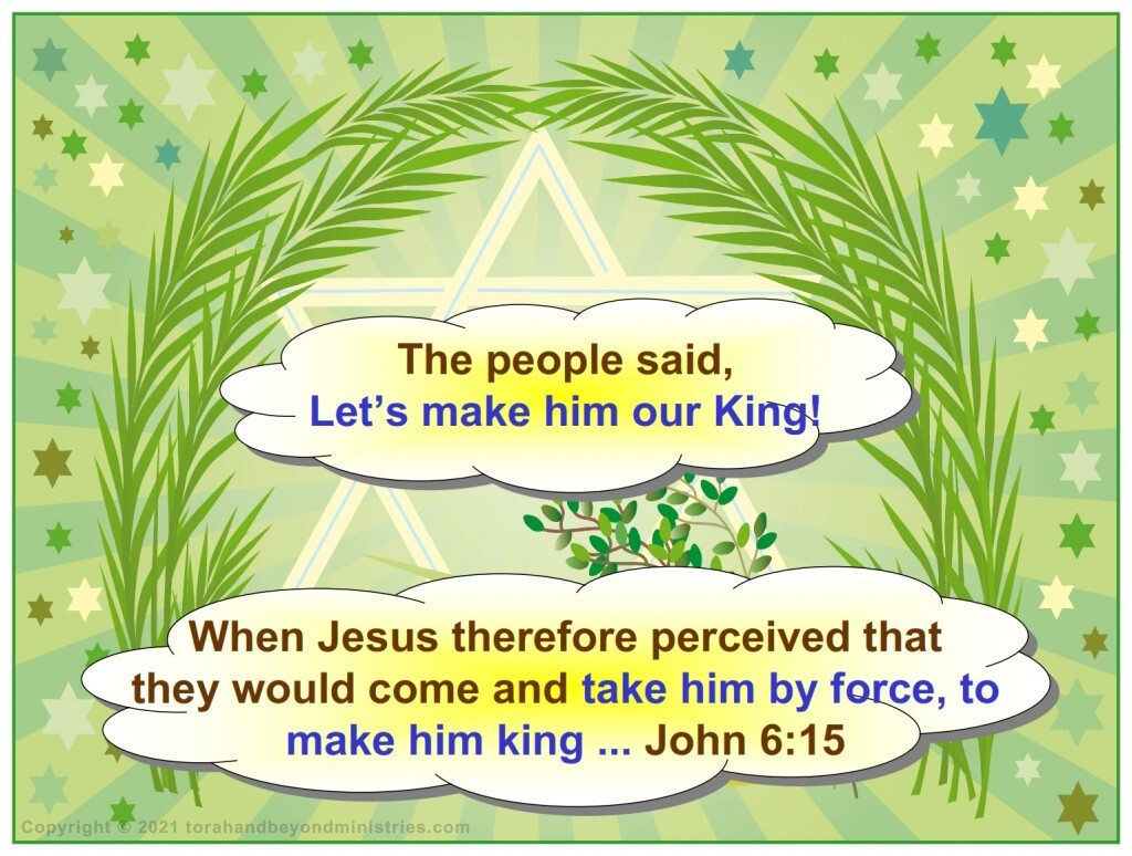 The people wanted to force Jesus to become King