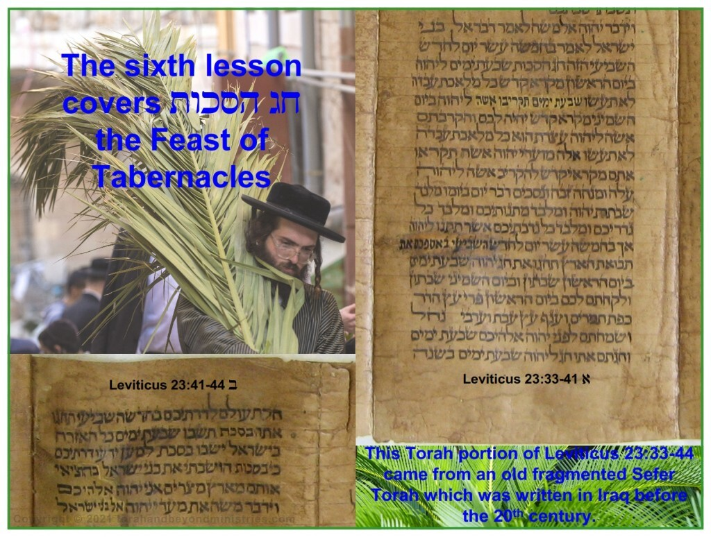 Feast of Sukkot - Tabernacles is the last of the Feasts of the Lord Leviticus 23