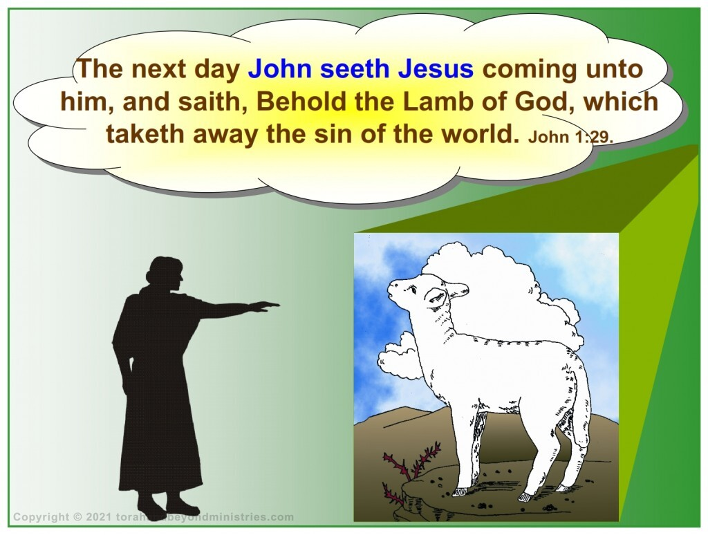 John the Baptist said Behold the Lamb of God which taketh away the sins of the Earth