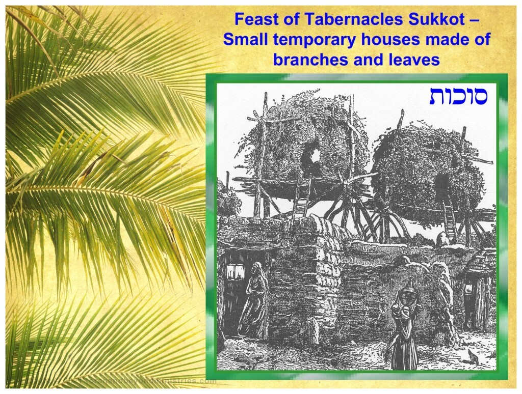 Sukkot, small temporary houses made of branches and leaves