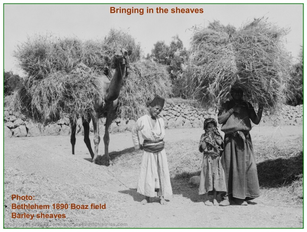 Christian song, Bringing in the sheaves - most people have no idea what a sheave is
