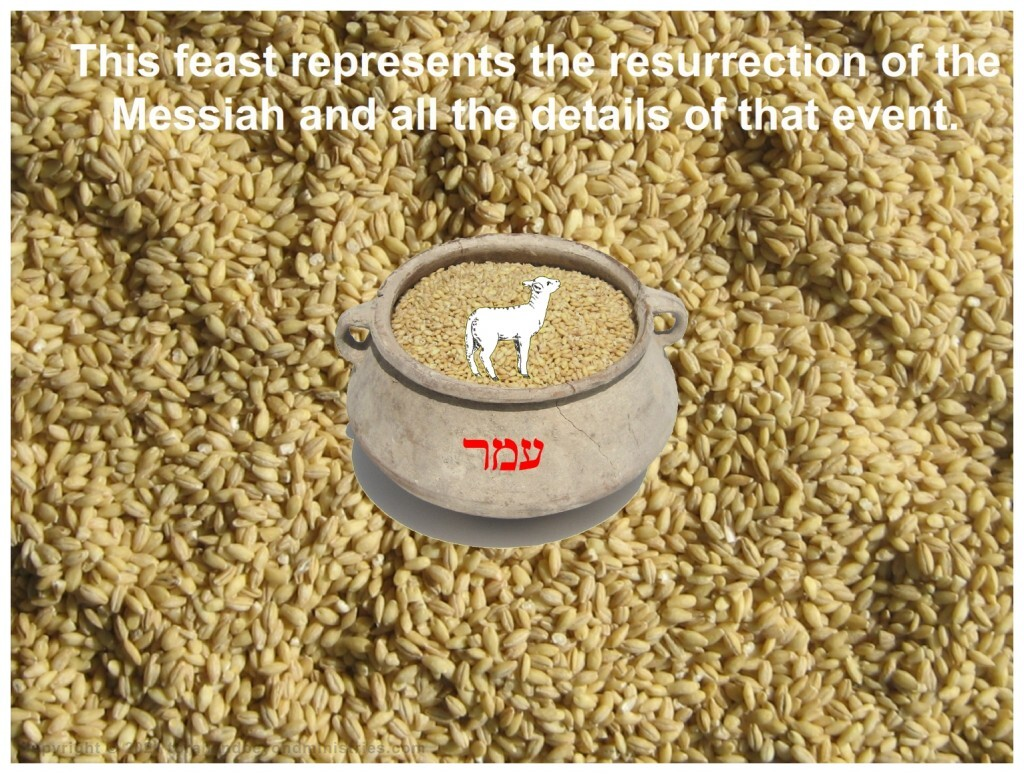 The Lamb of God brought the omer to the Father