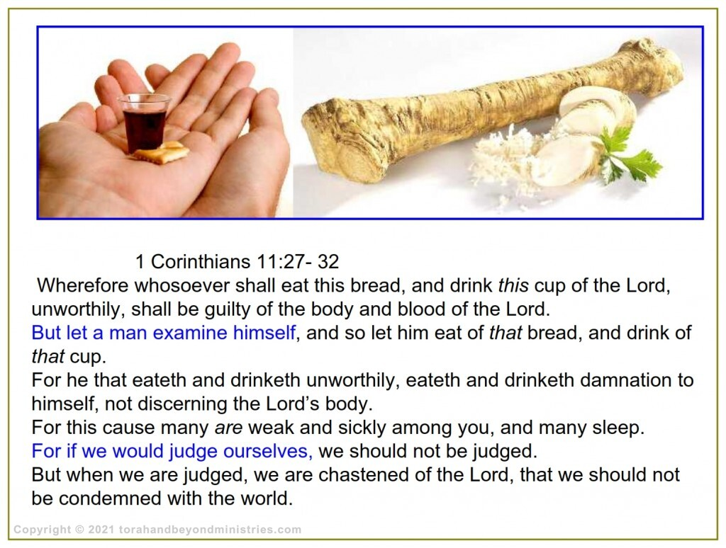 These are the three articles for Passover and Communion
