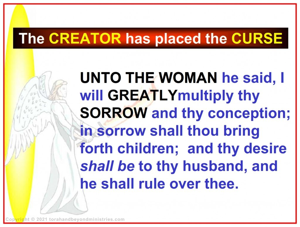 Woman was cursed in the Garden of Eden
