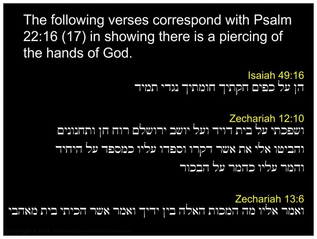 Jesus was pierced Isaiah 49:16,Zechariah 12:10, 13:6 Psalm 22:16