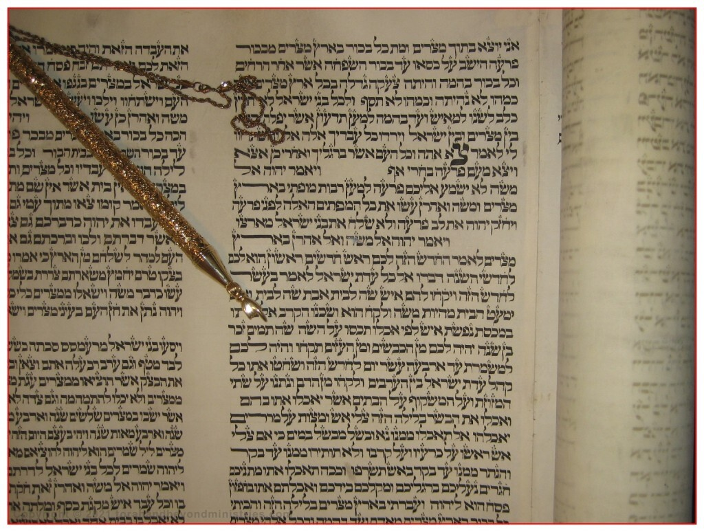 Exodus 12 From Torah Scroll written in Lithuania in the 1700s - Pointing to your lamb shall be without blemish