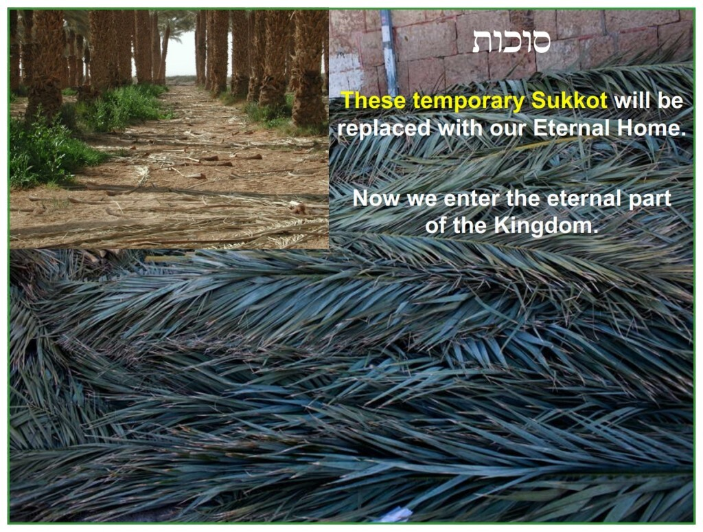 The temporary Sukkot are now dismantled and cast aside for the Eternal Home.