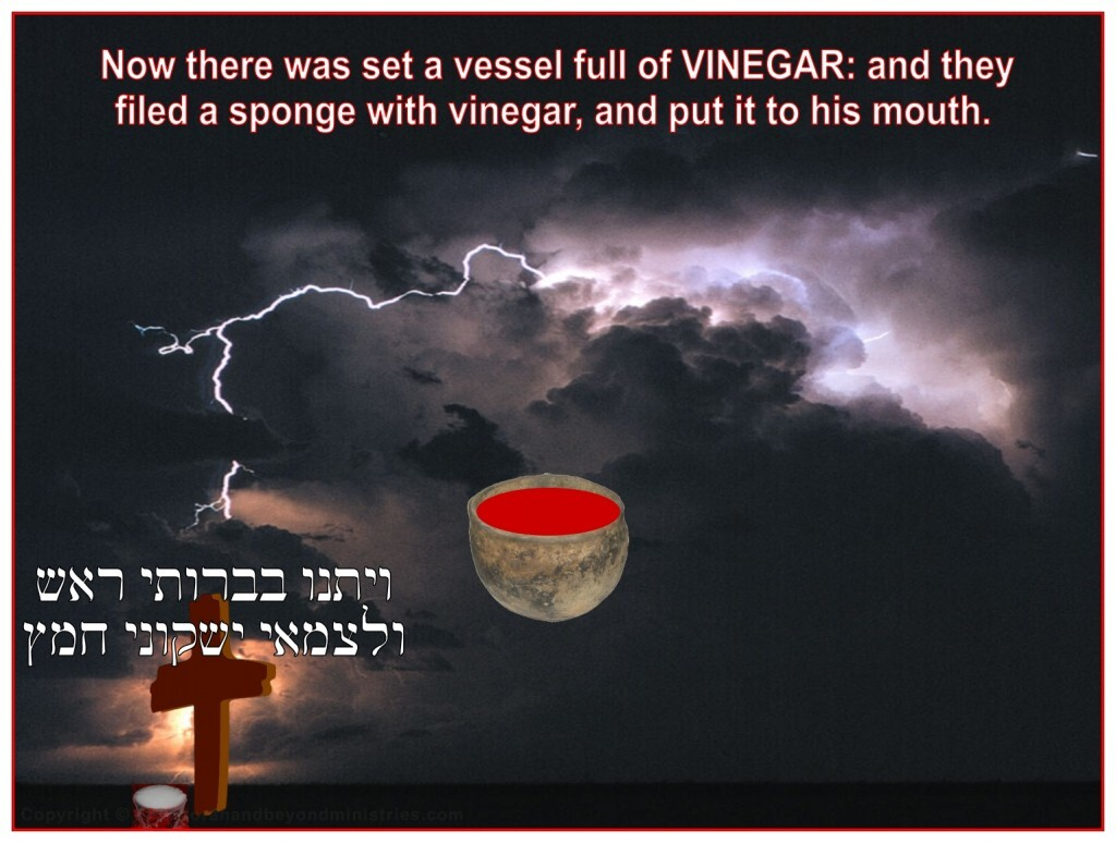 Jesus received the fruit of the vine, not the good fruit, but vinegar, to drink.
