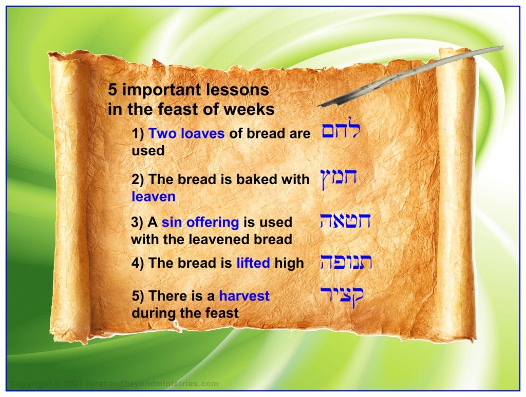 Five important lessons in the Feast of Weeks, Leviticus 23