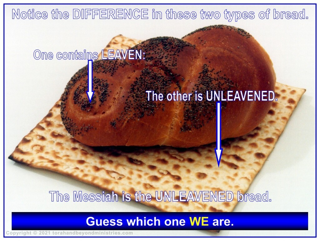 Notice the difference in these two types of bread: one contains leaven the other is unleavened.