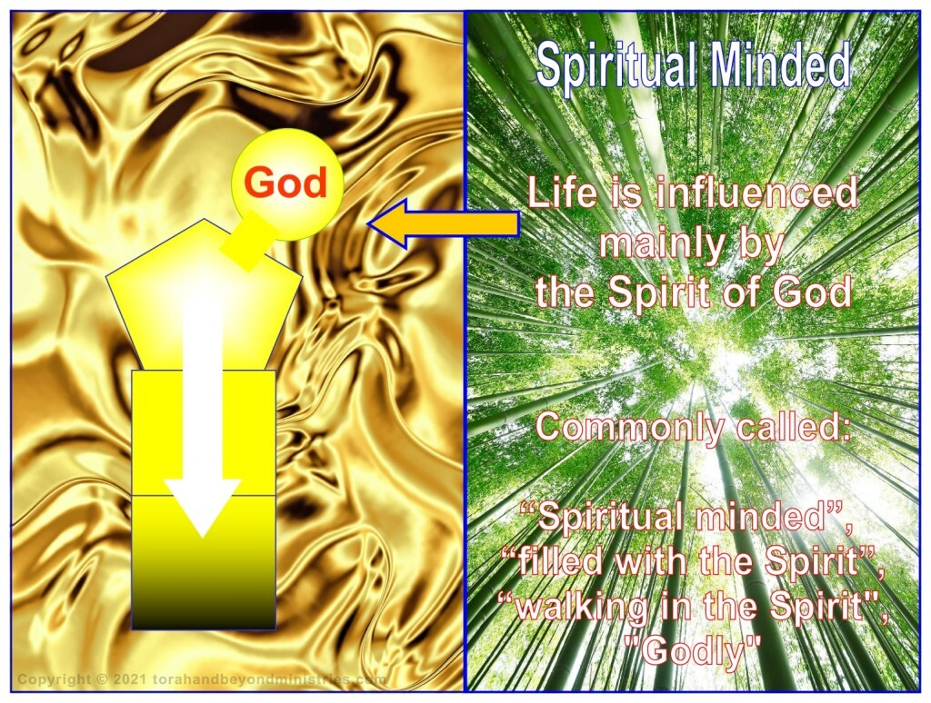 We are now redeemed and set free to grow in the Lord and be spiritual minded.