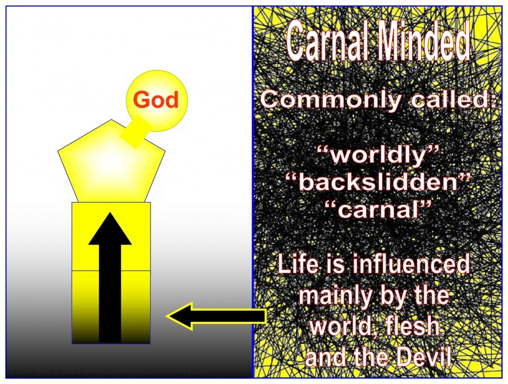 """A """"born again"""" person does not have to live a carnal life."""