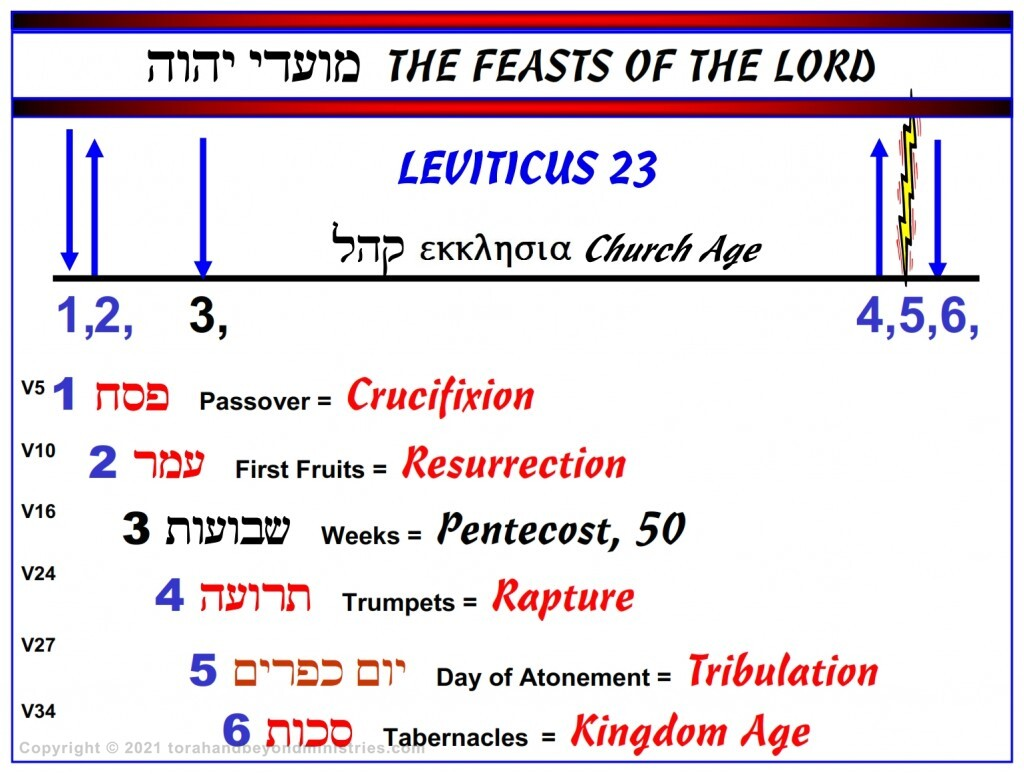 This is the Chronology of the Feasts of the Lord Leviticus 23. Notice the two groups of feasts separated by a vast time. Thus far it has been 2,000 years since the fulfillment of the last feast.