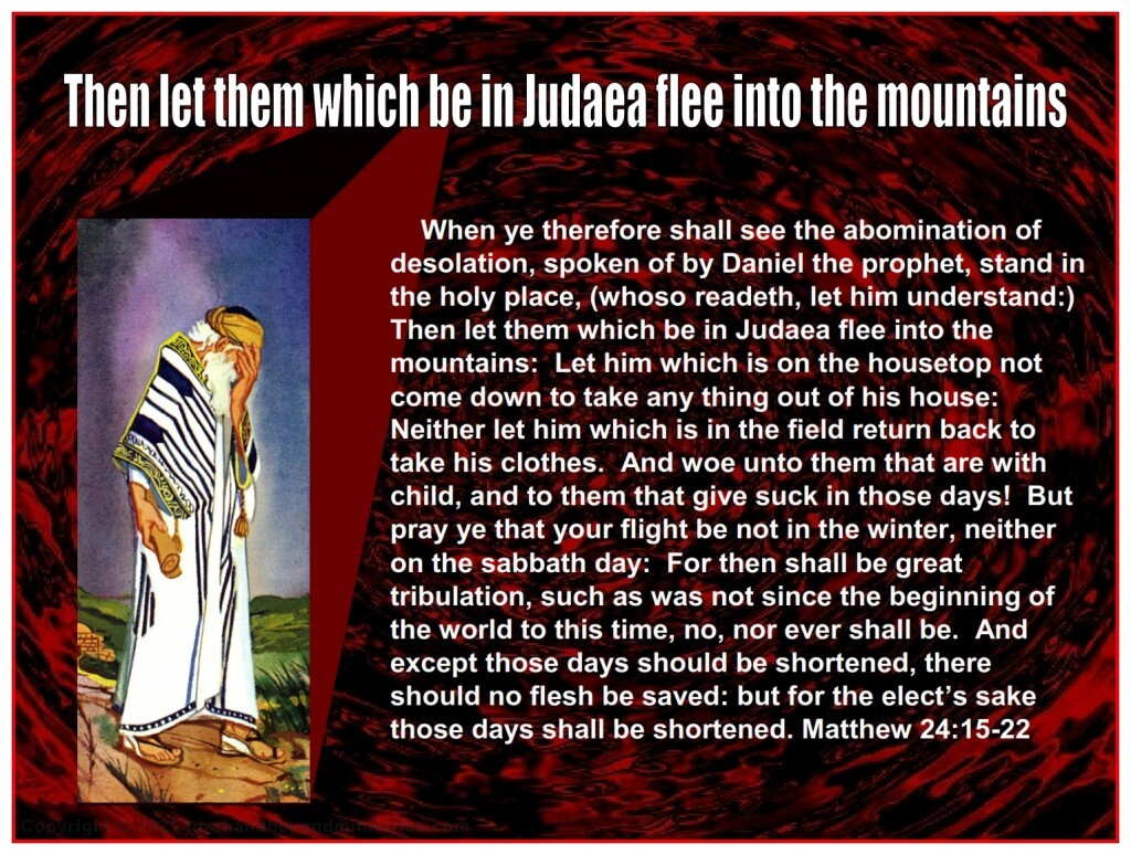 When ye therefore shall see the abomination of desolation, spoken of by Daniel the prophet, stand in the holy place, (whoso readeth, let him understand:)  Then let them which be in Judaea flee into the mountains:
