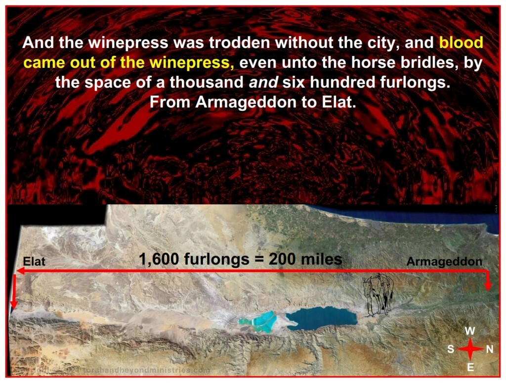 During the Tribulation, Blood flows for 200 miles during this battle.